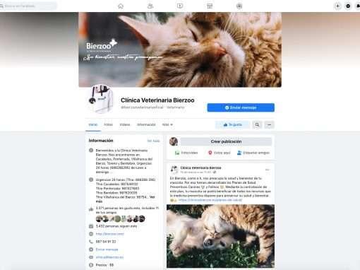 Social Media Clínica Veterinaria Bierzoo
